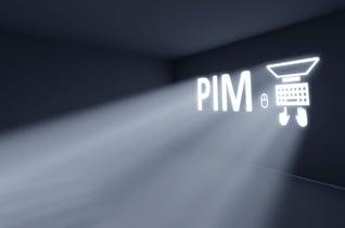 Blog-purpose-of-pim
